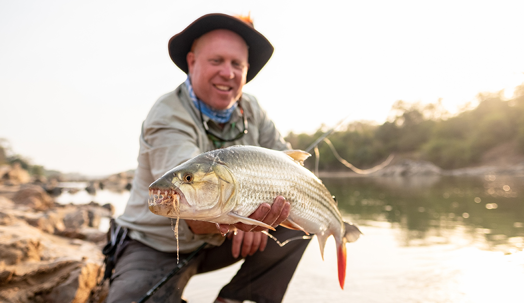 Tigerfish Caught on Fly Faro River
