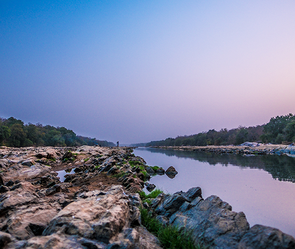Nile Perch Fishing